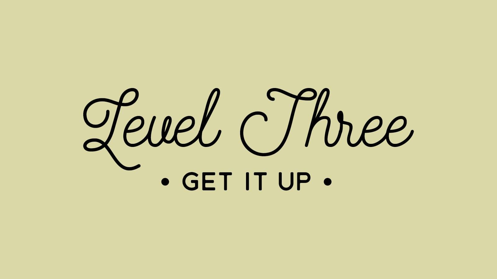 3. LEVEL THREE