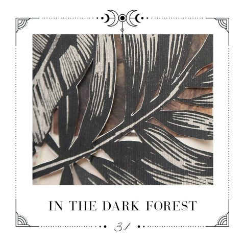 3.1 In the dark forest