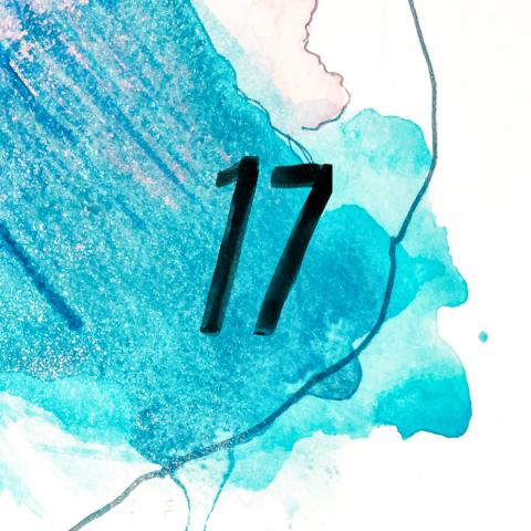Recipe 17