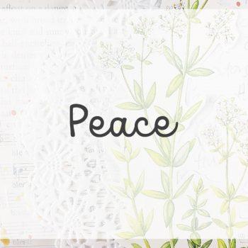 Lesson 6 – Peace